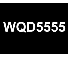 Special Number Plate For Sale - WQD5555